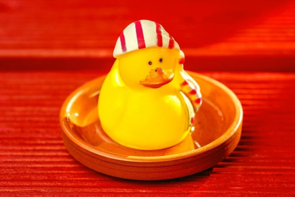 Duck sitting on a red wooden panel