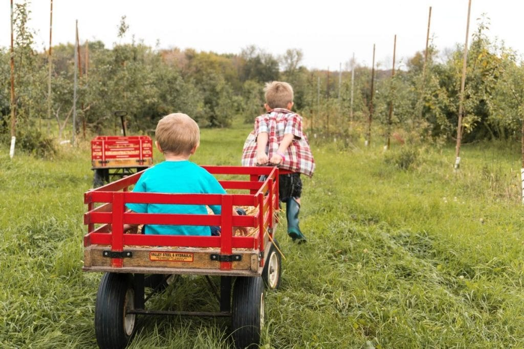 One kid pulling another in a wagon