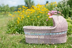 baby bassinet in flowery field