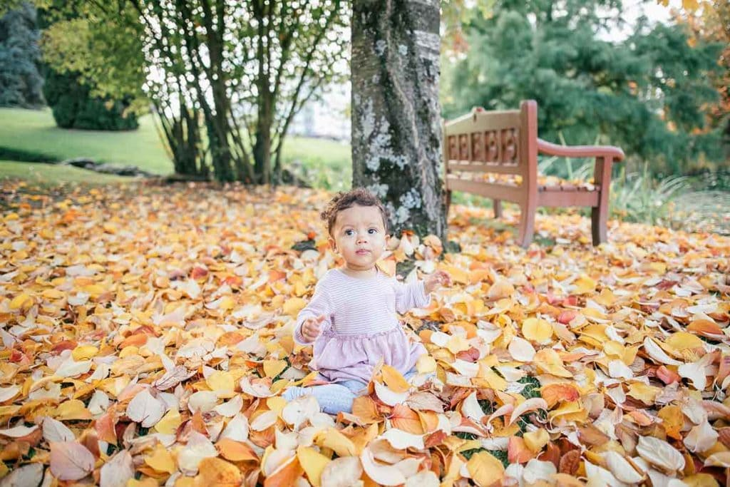 Baby sitting on maple leaves