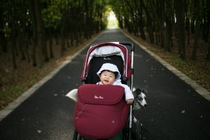 Smiling baby in a stroller on the path lined by trees