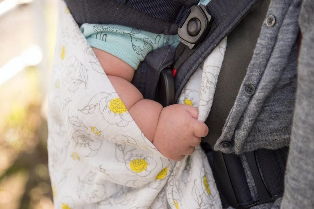 Baby in a carrier